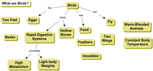 Partial Cmap about Birds