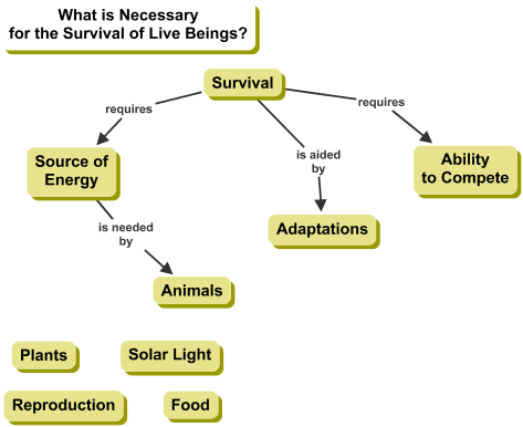 Cmap on What is Necessary for the Survival of Live Beings?